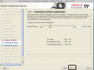 Oracle 11g on Linux install